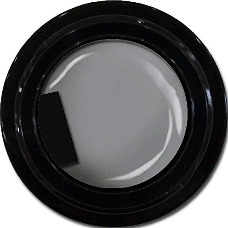 あたたかい無秩序不格好カラージェル enchant color gel M807 LegendGray 3g/ マットカラージェル M807レジェンドグレイ 3グラム