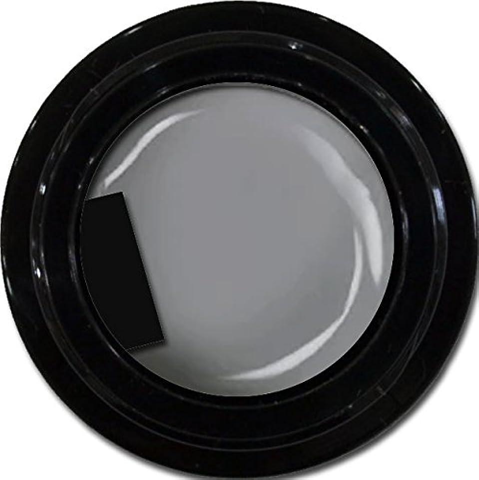 怠絡まる貢献するカラージェル enchant color gel M807 LegendGray 3g/ マットカラージェル M807レジェンドグレイ 3グラム