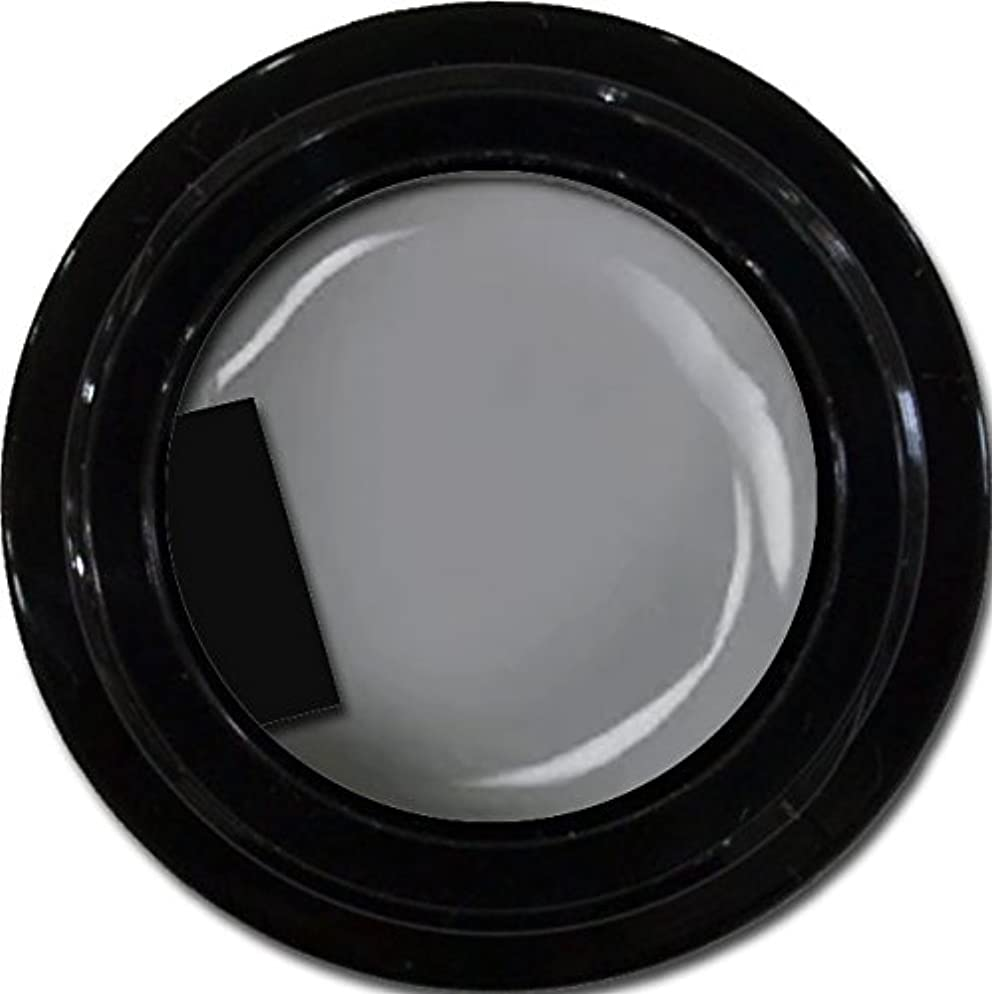 論文櫛ダイヤルカラージェル enchant color gel M807 LegendGray 3g/ マットカラージェル M807レジェンドグレイ 3グラム