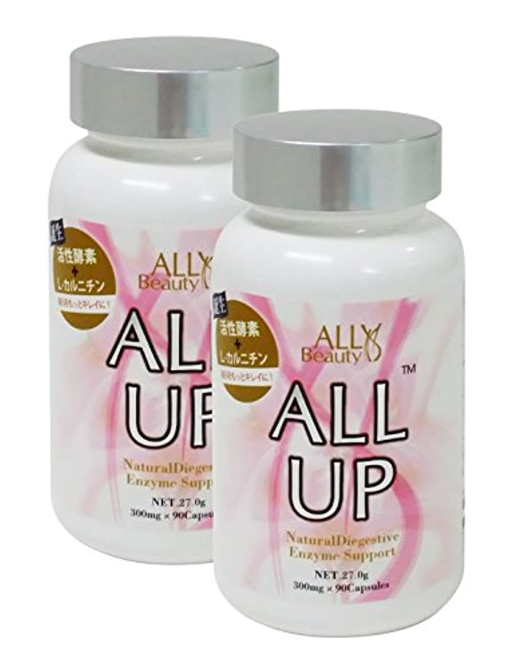 気をつけて動的不定ALLUP™-オールアップ 2個セット パシュミナマフラー付き