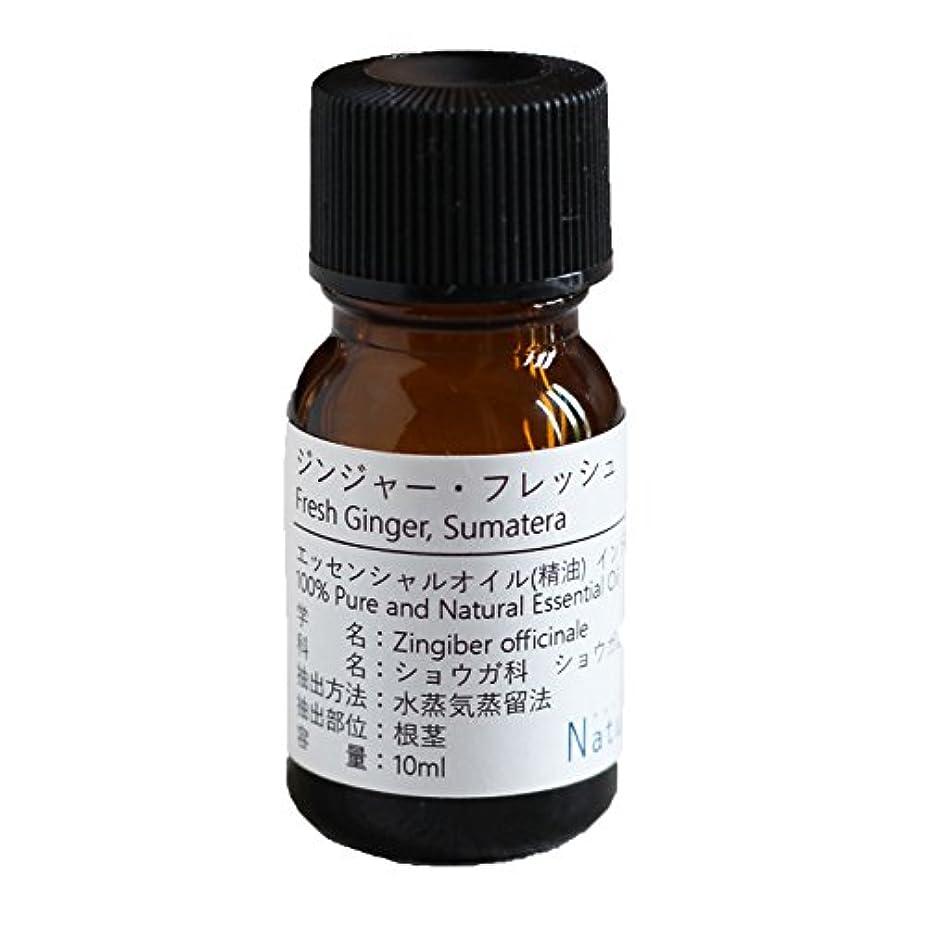 酸度仮装適応するNatural蒼 ジンジャー?フレッシュ/エッセンシャルオイル 精油天然100% (30ml)