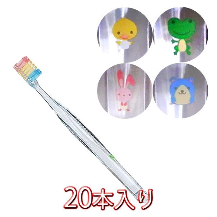 提唱するキャンセルディンカルビルプロスペック プラス フォーレッスン 歯ブラシ 20本入 スモール