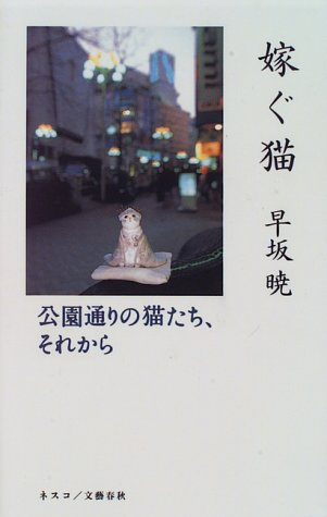 嫁ぐ猫―公園通りの猫たち、それから