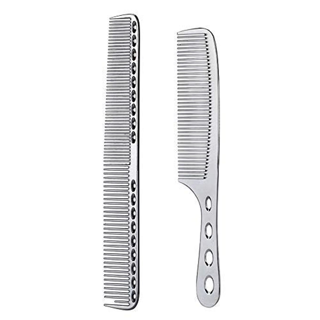 アンドリューハリディフィッティングねじれ2 pcs Stainless Steel Hair Combs Anti Static Styling Comb Hairdressing Barbers Combs (Silver) [並行輸入品]