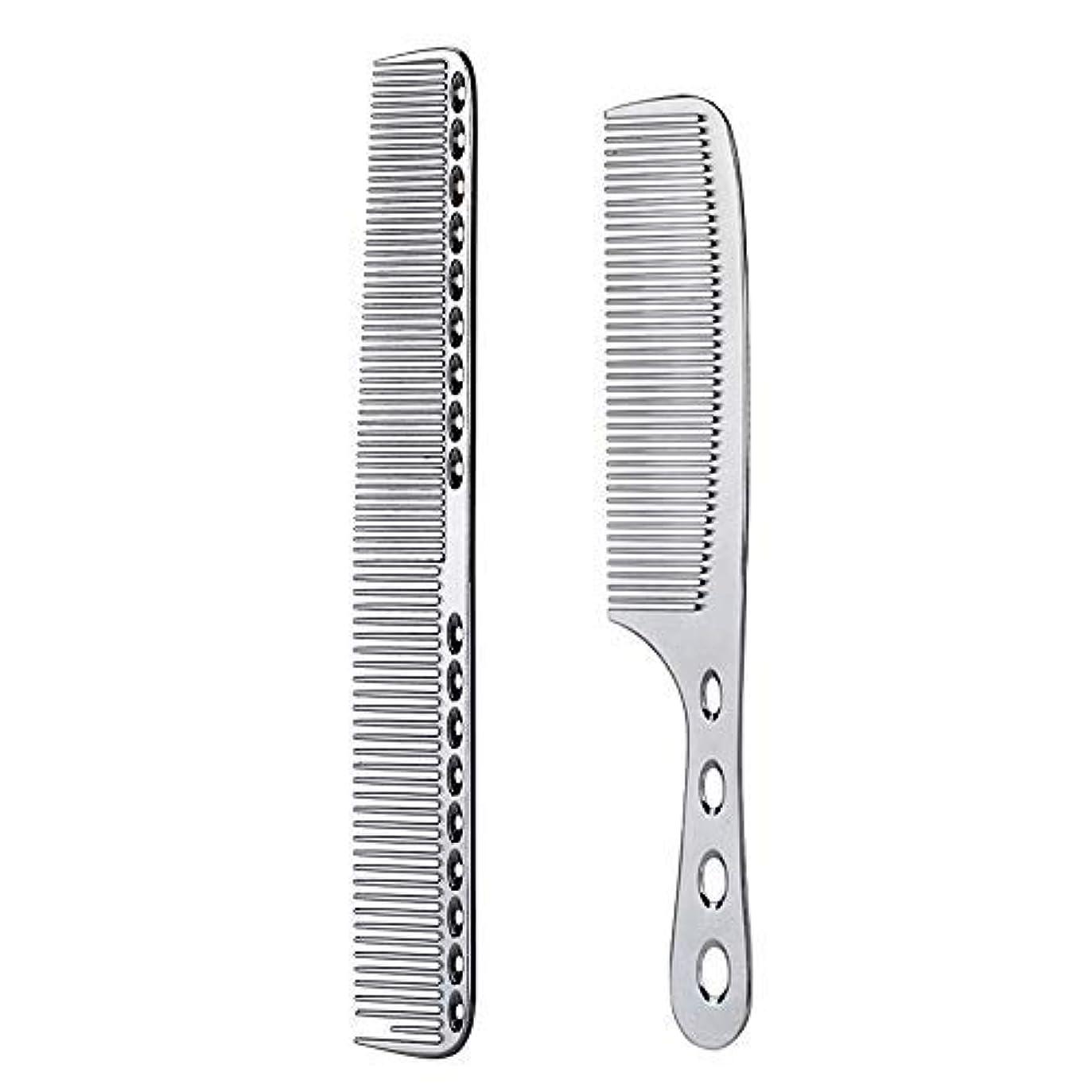 アベニューデッドロック現実的2 pcs Stainless Steel Hair Combs Anti Static Styling Comb Hairdressing Barbers Combs (Silver) [並行輸入品]