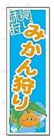のぼり のぼり旗 みかん狩り (W600×H1800)