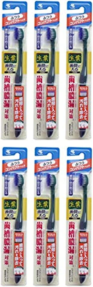 基礎アルプス前述の【まとめ買い】生葉(しょうよう)歯間に入るブラシ 歯ブラシ コンパクト ふつう【×6個】