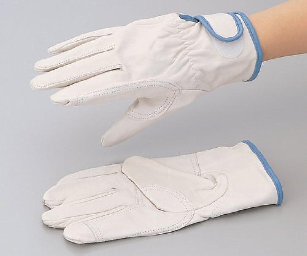 エスニックガチョウ供給レスキュータイプ皮手袋 200YP M