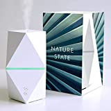 Nature State Ultrasonic Essential Oil Diffuser Wellness Relaxation Aromatherapy