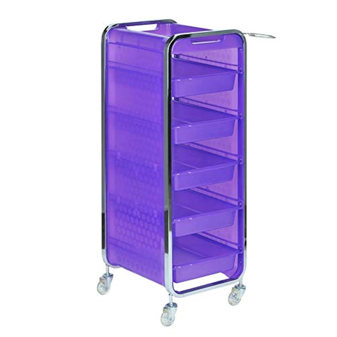 週間頑丈パブサロン美容院トロリー美容美容収納カート6層トレイ多機能引き出し虹色,Purple,A