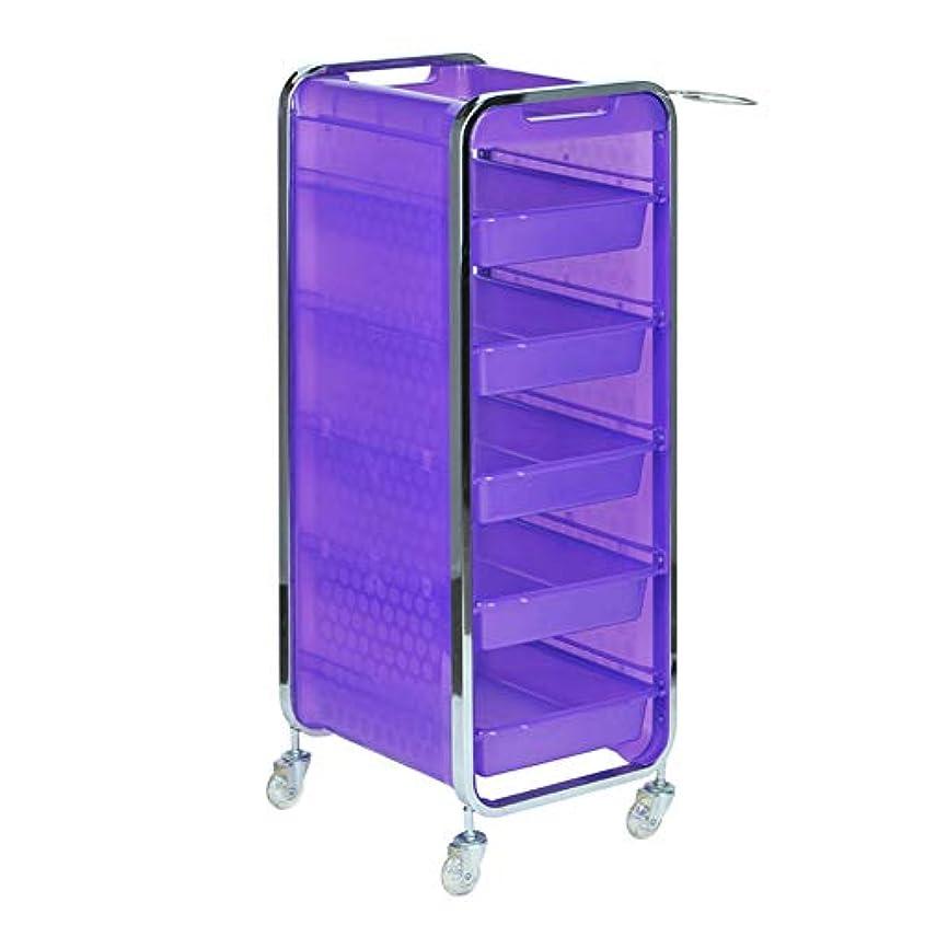 協力的突き出す四回サロン美容院トロリー美容美容収納カート6層トレイ多機能引き出し虹色,Purple,A