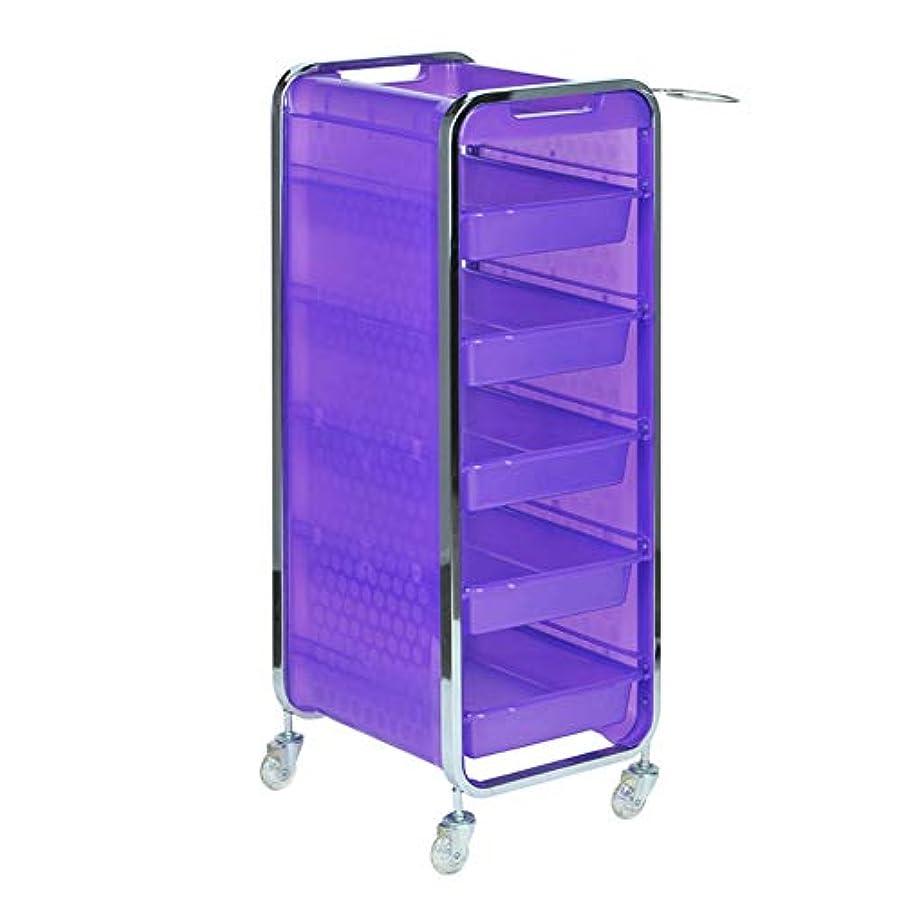 膨らみ関数縞模様のサロン美容院トロリー美容美容収納カート6層トレイ多機能引き出し虹色,Purple,A