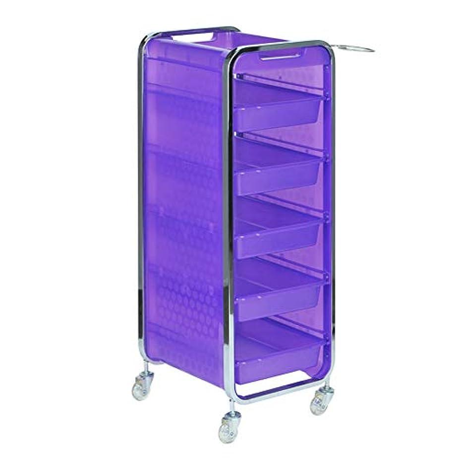 予約リー勝利したサロン美容院トロリー美容美容収納カート6層トレイ多機能引き出し虹色,Purple,A