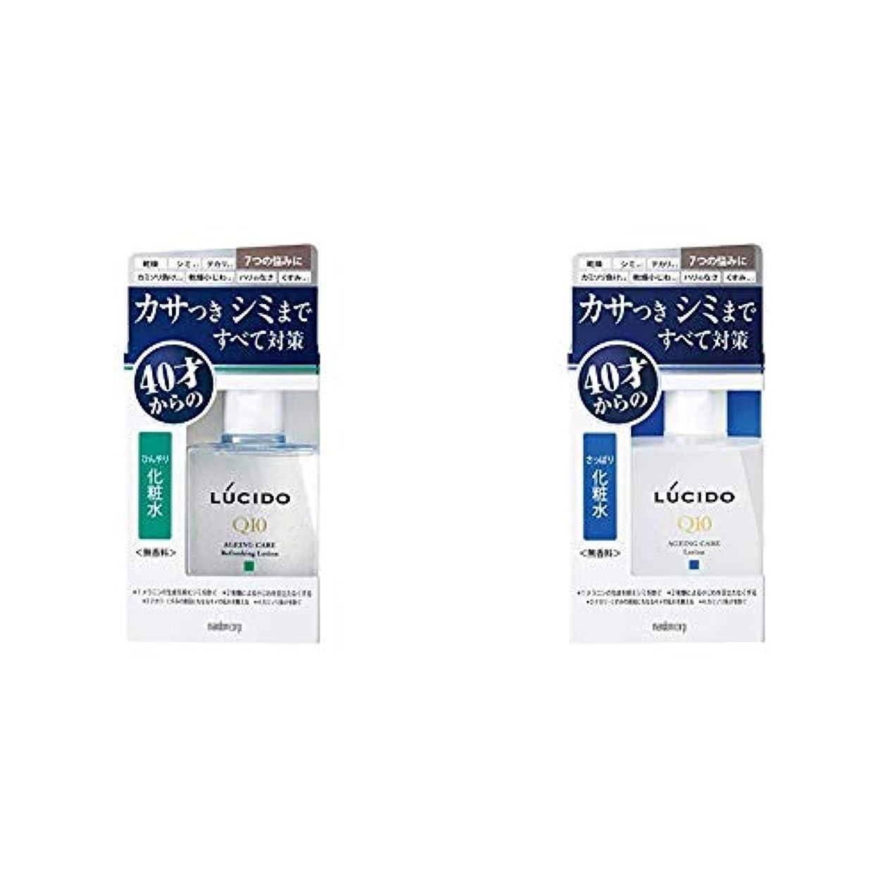 トランスペアレント服つまずくルシード(LUCIDO)薬用 トータルケアひんやり化粧水 メンズ スキンケア さっぱり 110ml(医薬部外品) & ルシード 薬用 トータルケア化粧水 (医薬部外品)110ml