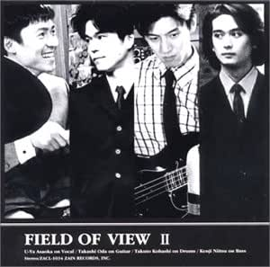 FIELD OF VIEW II