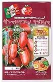 サンマルツアーノ リゼルバ   パイオニアエコサイエンスの中玉トマト種です
