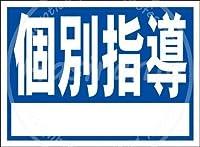 「個別指導(紺)」 金属板ブリキ看板注意サイン情報サイン金属安全サイン警告サイン表示パネル