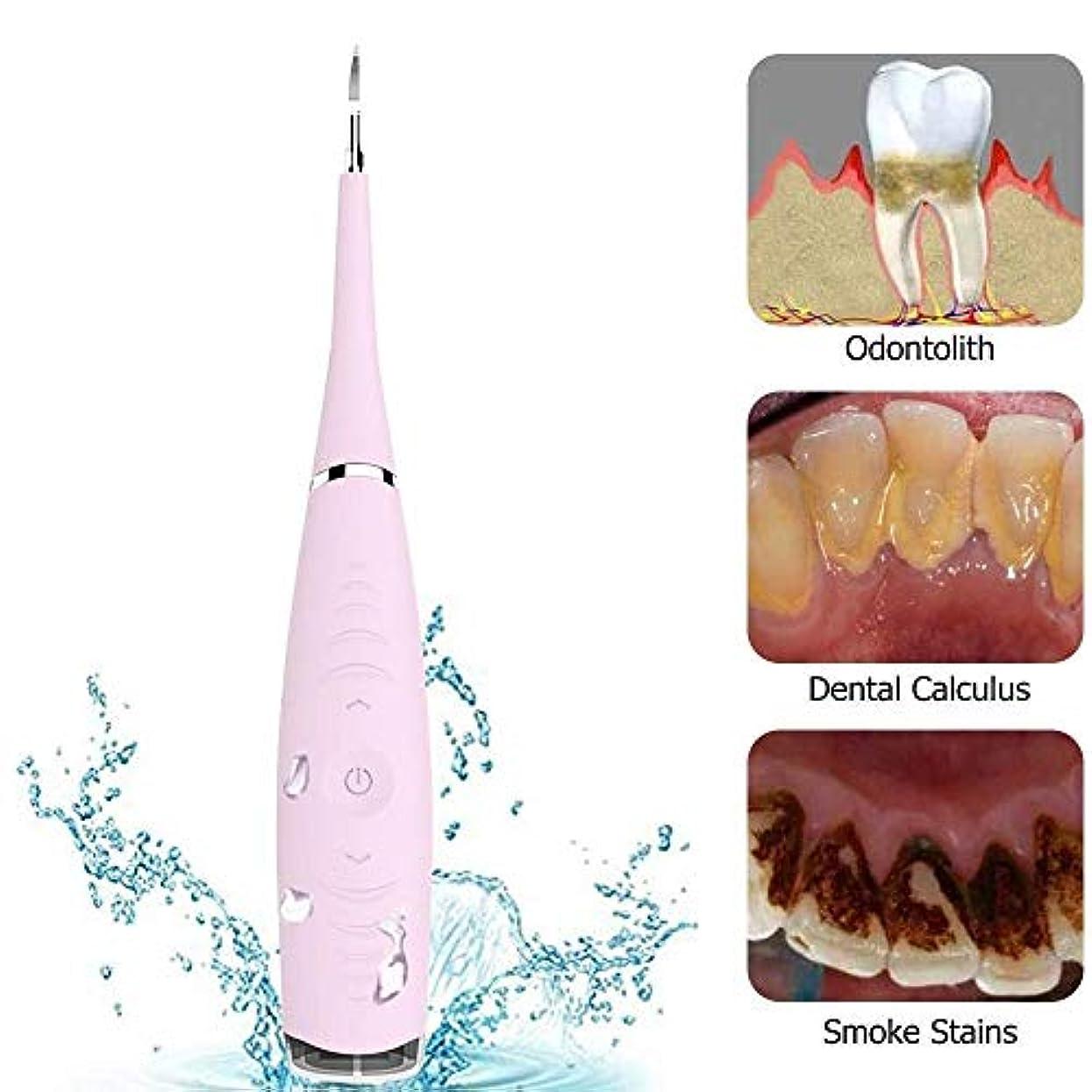 でも好意反動電動音波歯石歯垢除去ツールキット - 歯スクレーパー歯石除去クリーナー歯の汚れ、歯垢除去、5調整可能モード