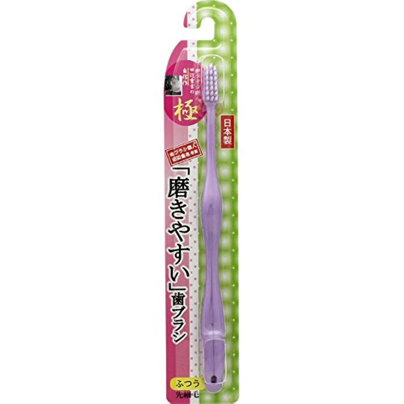 にじみ出る保守可能細菌ライフレンジ 磨きやすい歯ブラシ 極 LT-24 ふつう 1本