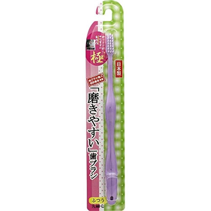 民間人ひばり戦闘ライフレンジ 磨きやすい歯ブラシ 極 LT-24 ふつう 1本