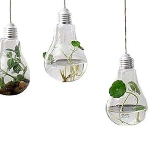 Reynolds Ave 素敵 インテリア 電球 型 フラワーベース 観葉植物 にも (両面 穴 3個セット)