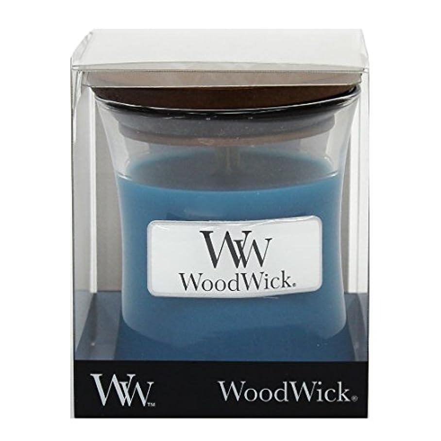 カロリー義務付けられた罪悪感Wood Wick ウッドウィック ジャーキャンドルSサイズ  デュードロップ