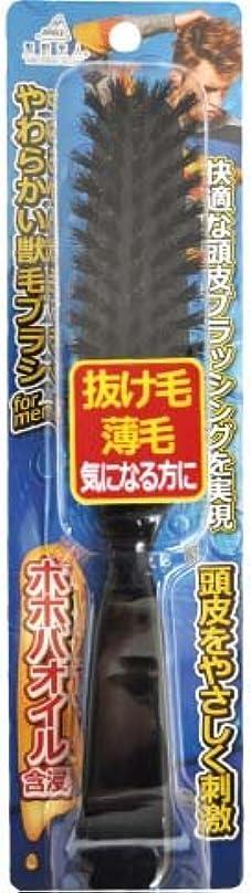 本体相互接続経度アヌシ 髪艶美人 ホホバオイル含浸やわらかい天然獣毛ブラシ for MEN TK-1204M