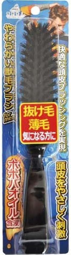 太鼓腹施設敬意を表するアヌシ 髪艶美人 ホホバオイル含浸やわらかい天然獣毛ブラシ for MEN TK-1204M