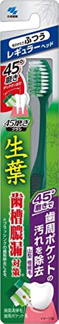 無許可怒っている課す小林製薬 生葉45°磨きブラシ 歯周ポケットの汚れを除去 レギュラー ふつう