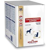 ロイヤルカナン 療法食 高栄養パウダー 犬猫用 50g×10個