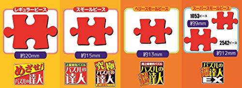 3000ピース ジグソーパズル 究極 パズルの達人 四神図 スモールピース(73x102cm)