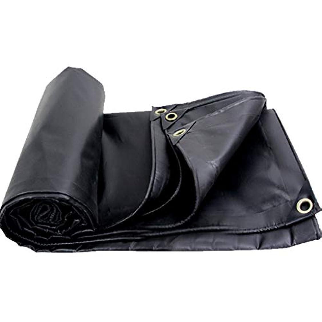 重なる振動させる混合したサンシェード ブラックターポリンブラックアウトレインキャンバス防水日焼け止め布起毛布汚れにくい Rollsnownow (サイズ さいず : 3*4m)
