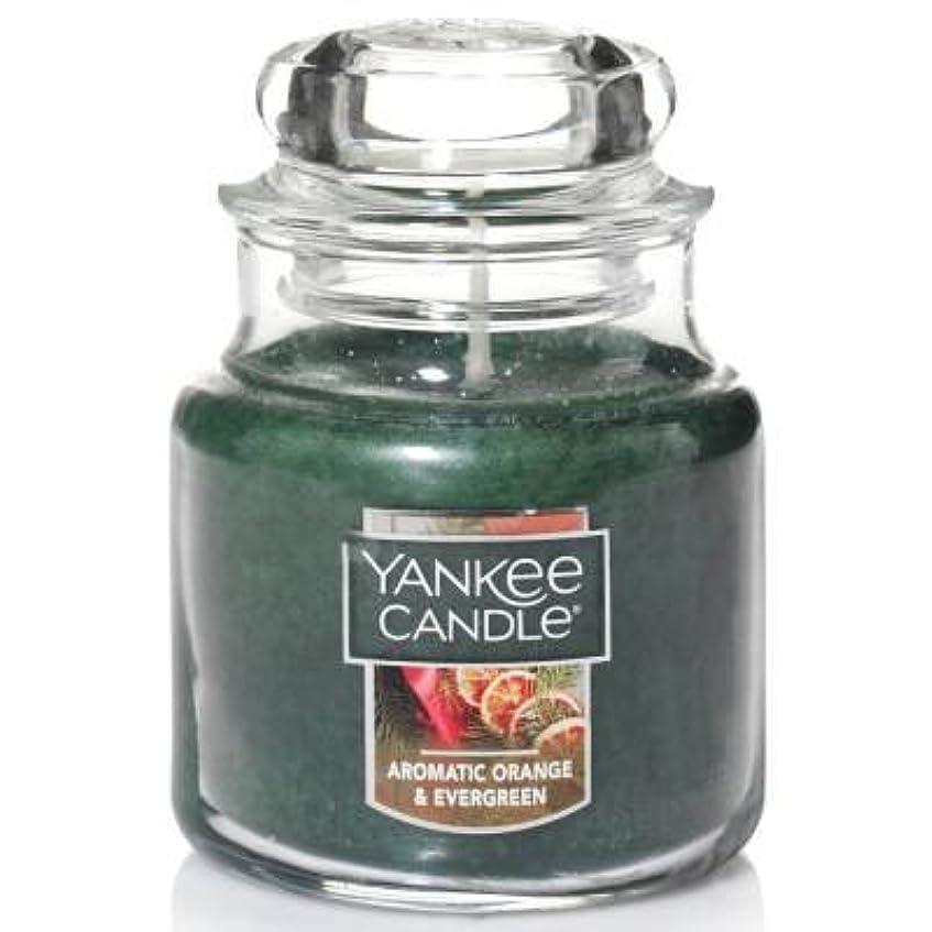 課す寄生虫楕円形Yankee Candle Aromaticオレンジ& Evergreen Small Jar Candle