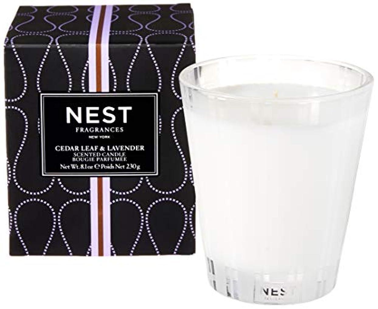 春クラッシュ可能性ネスト Scented Candle - Cedar Leaf & Lavender 230g/8.1oz並行輸入品