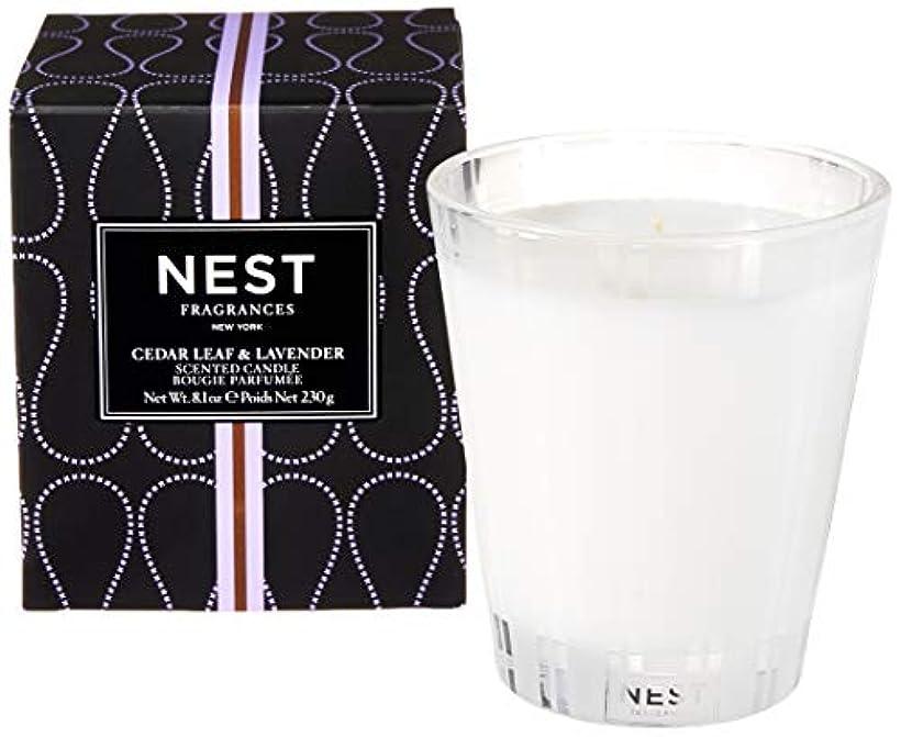 胴体インタビュー高潔なネスト Scented Candle - Cedar Leaf & Lavender 230g/8.1oz並行輸入品