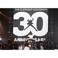 "30th ANNIVERSARY TOUR ""THE FIGHTING MAN"" FINAL さいたまスーパーアリーナ"