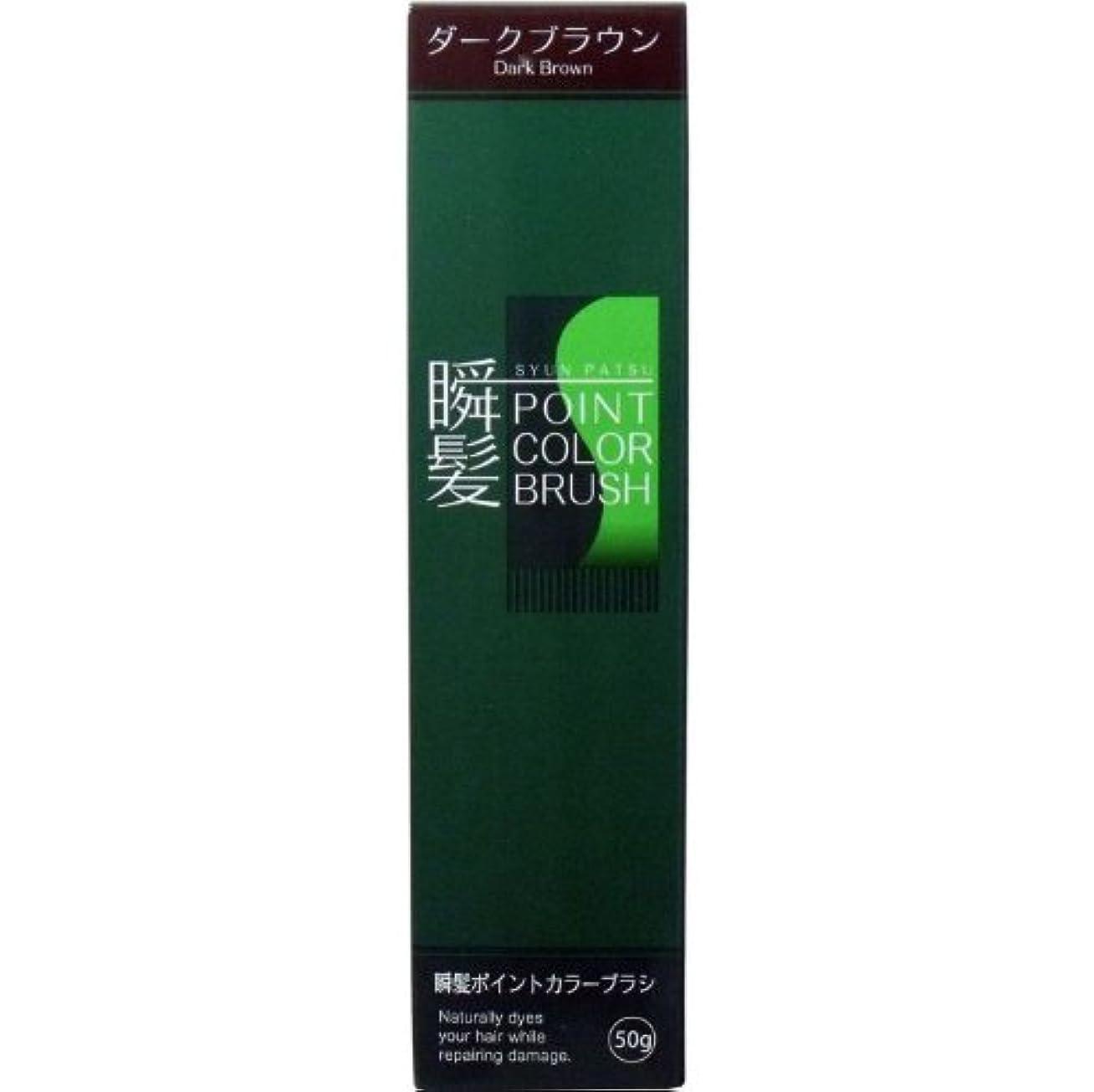 研究等価勇気瞬髪ポイントカラーブラシ 染毛料 ダークブラウン 50g