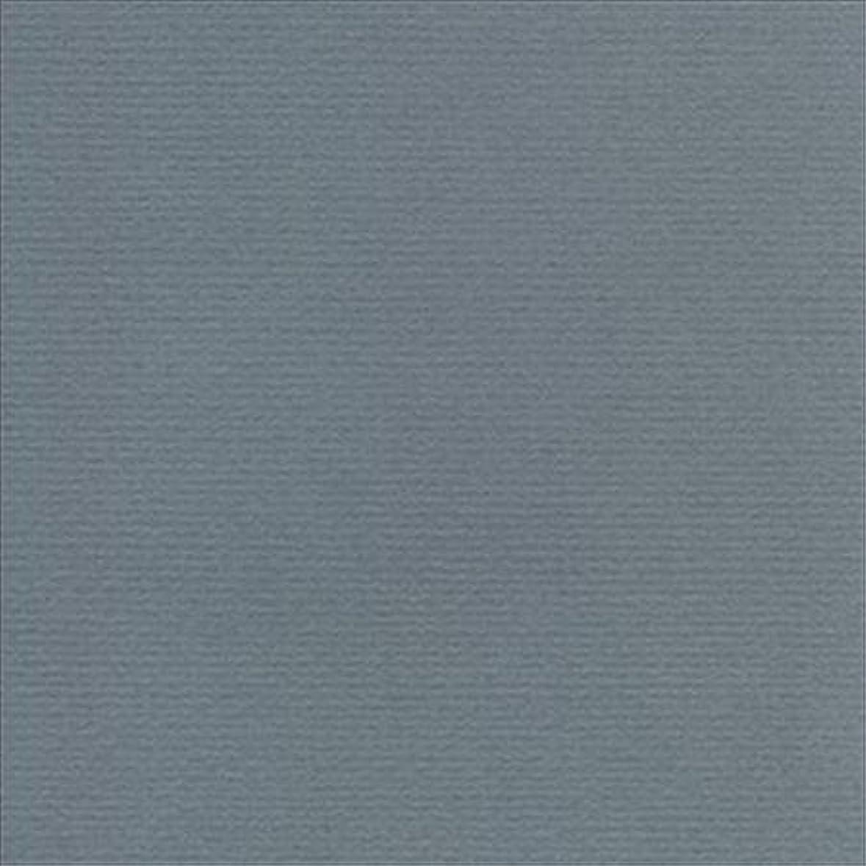 先祖立法勝利したMurano Colored paper- Wedgewood 19 x 25インチ