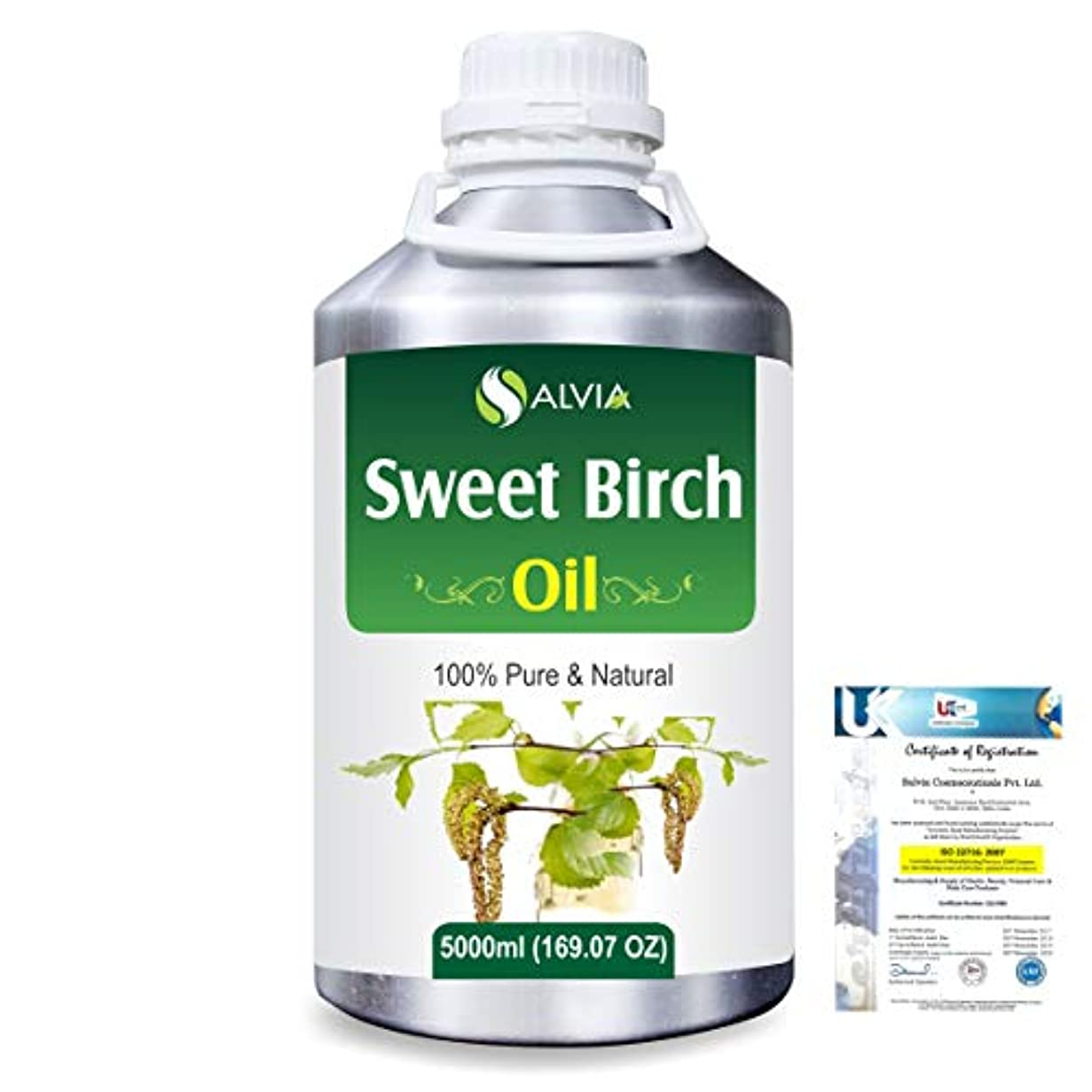 グラフ序文ロールSweet Birch (Betula lenta) 100% Natural Pure Essential Oil 5000ml/169fl.oz.