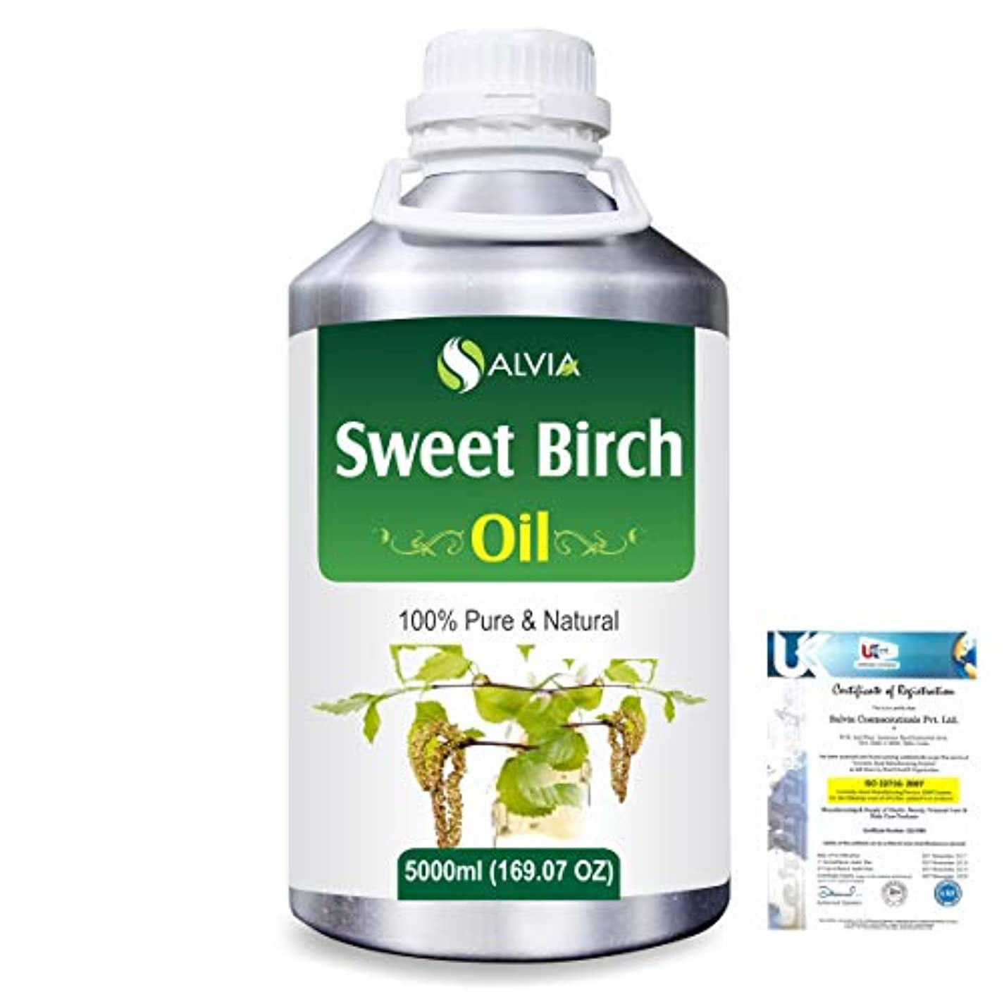 衛星ぬれた菊Sweet Birch (Betula lenta) 100% Natural Pure Essential Oil 5000ml/169fl.oz.