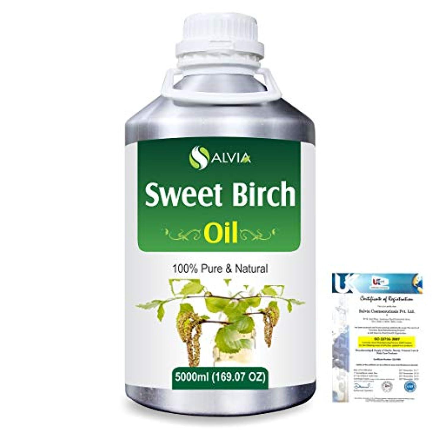 マットハッピー森Sweet Birch (Betula lenta) 100% Natural Pure Essential Oil 5000ml/169fl.oz.
