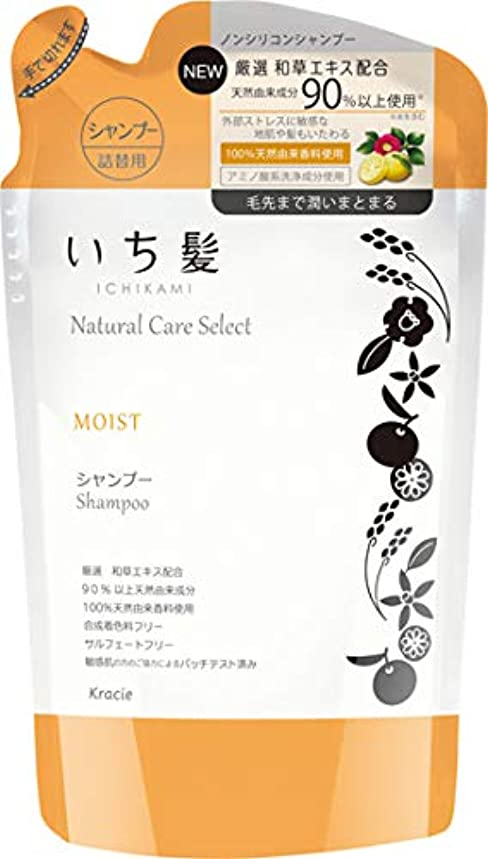 衝撃ピクニック失礼ないち髪ナチュラルケアセレクト モイスト(毛先まで潤いまとまる)シャンプー詰替340mL シトラスフローラルの香り