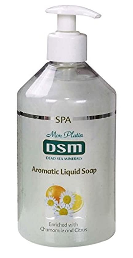 挑発するれんがルーかぐわしい香り付き官能的な、多目的の石鹸なしの石鹸 500mL 死海ミネラル A sensual, multi-purpose soapless soap, enriched with aromatic fragrances