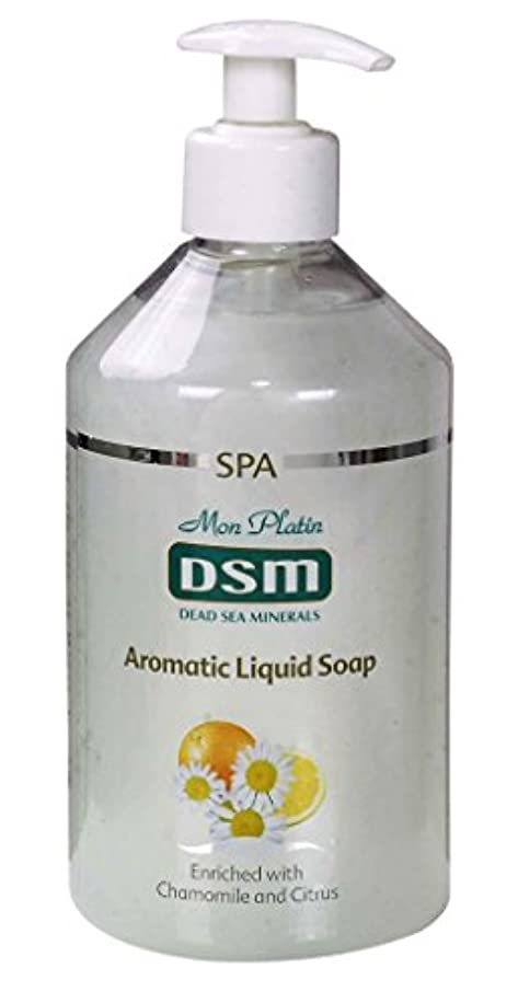 深さモネ牛肉かぐわしい香り付き官能的な、多目的の石鹸なしの石鹸 500mL 死海ミネラル A sensual, multi-purpose soapless soap, enriched with aromatic fragrances