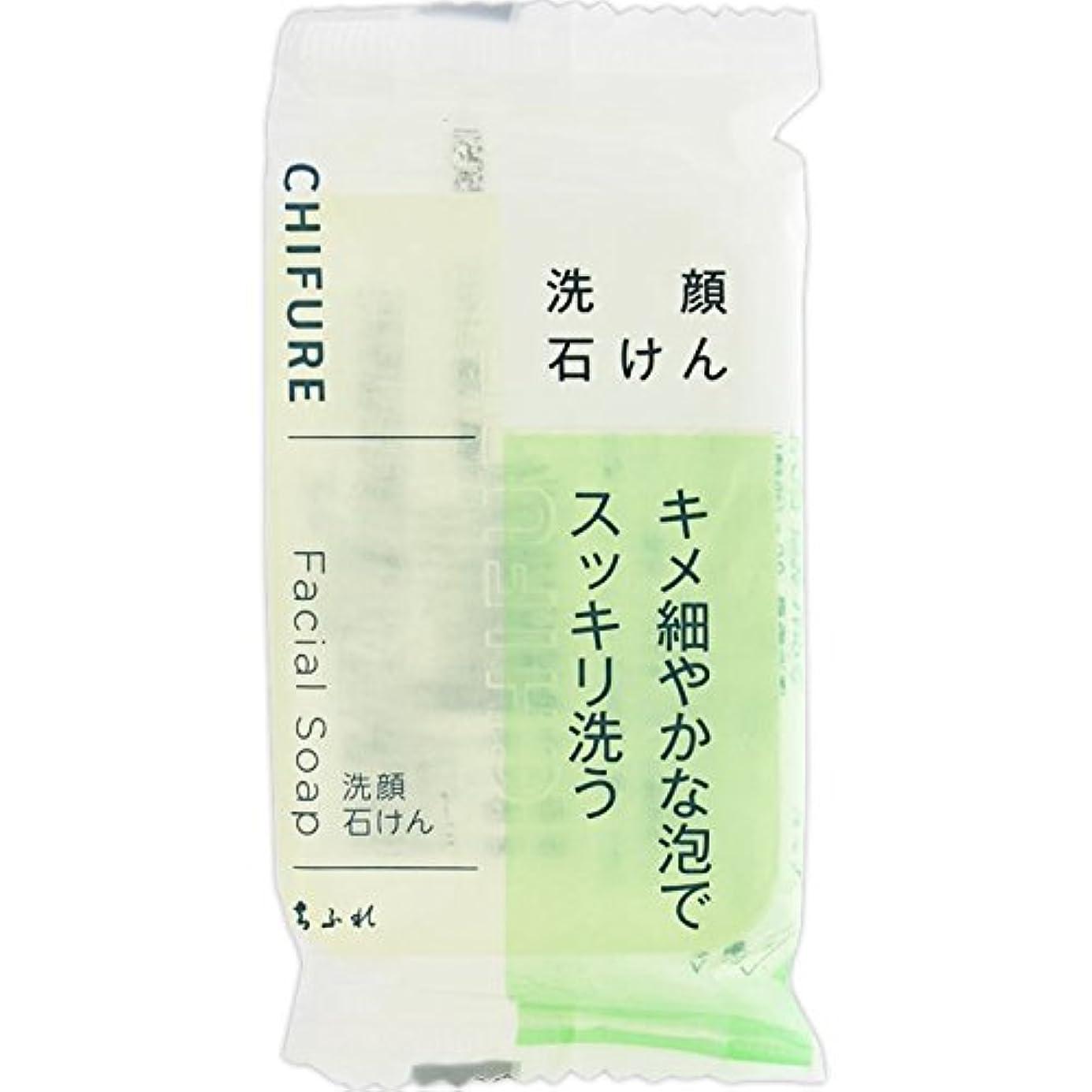 羨望下線階層ちふれ 洗顔石鹸80g無香料?無着色