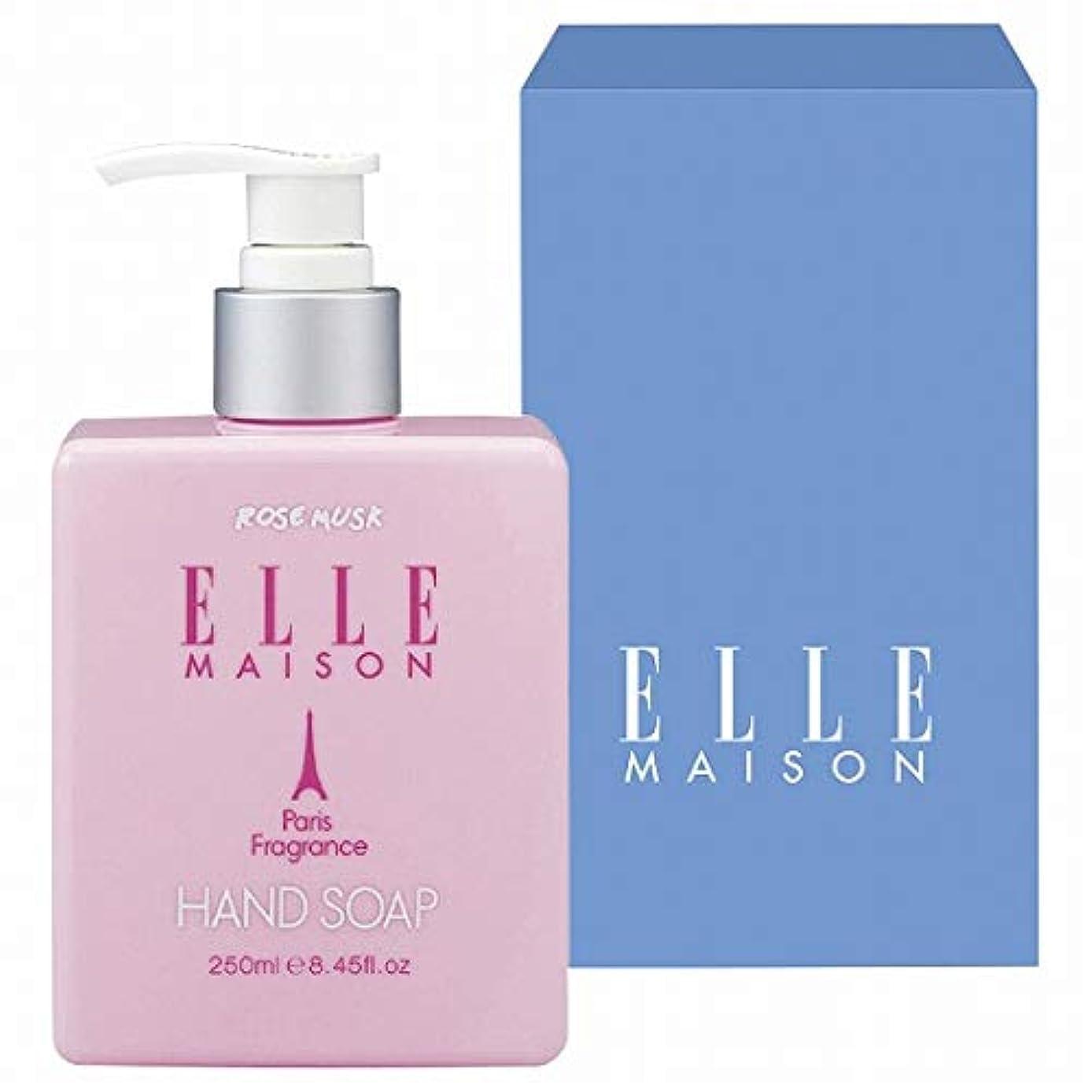 クレジット有害な淡いエルマイソン(ELLE MAISON) ELLE MAISON 薬用ハンドソープ