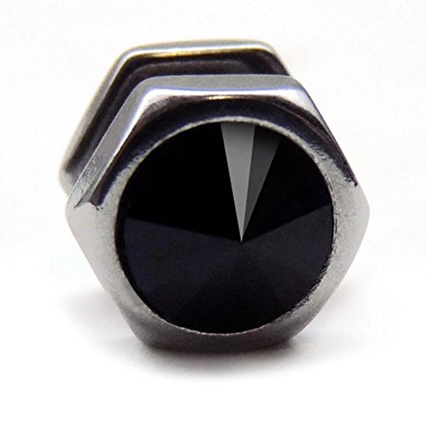 融合ゴミ異常スワンユニオン swanunion fp25六角形 片耳 磁石 マグピ ステンレス製 フェイクピアス fp25-M