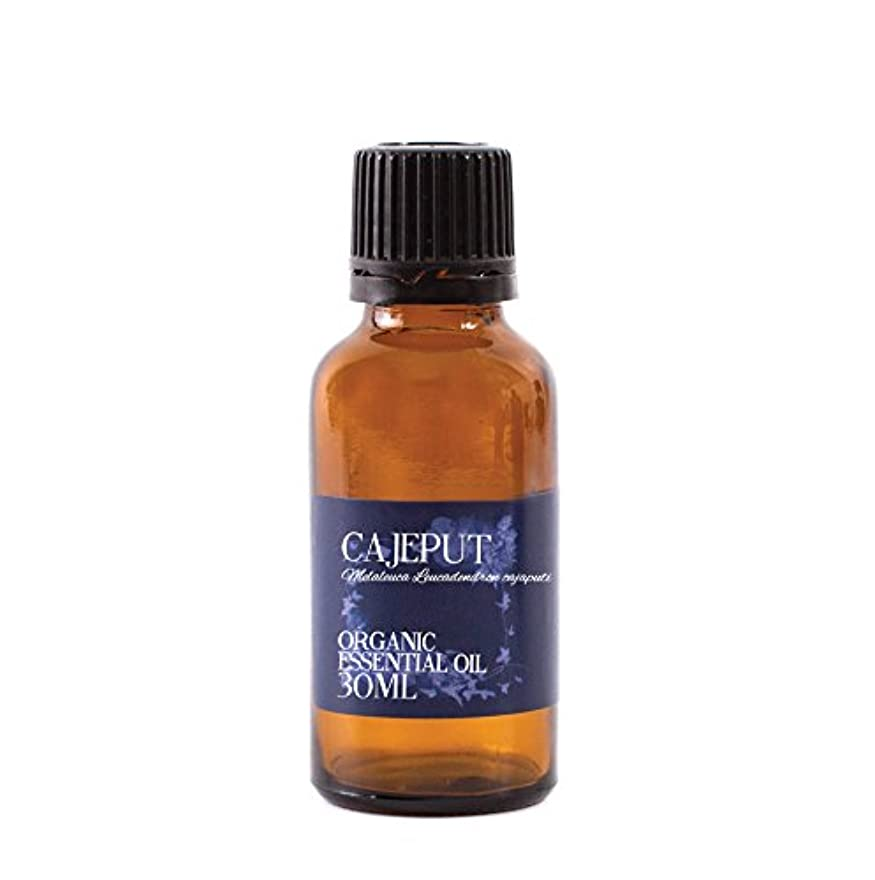 非アクティブ解明する奨励しますMystic Moments | Cajeput Organic Essential Oil - 30ml - 100% Pure