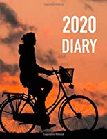 2020 DIARY: I am not saying that this diary will make you a confident billionaire astronaut who fights crime at night, but I am insinuating it. Anything is possible when your diary feels like success, and you are on a horse. and entries turn into diamonds
