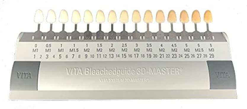 サークル期間抜け目がないビタ VITA ブリーチシェードガイド3Dマスター 15色